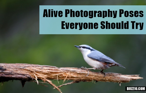 Alive Photography Poses Everyone Should Try0441