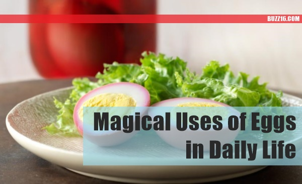 Magical Uses of Eggs in Daily Life0031