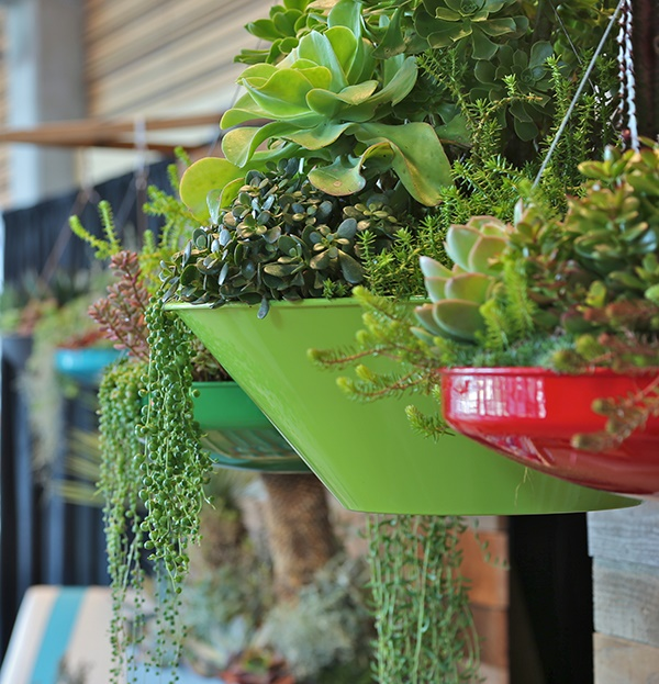 mini indoor gardens ideas for anyone0391