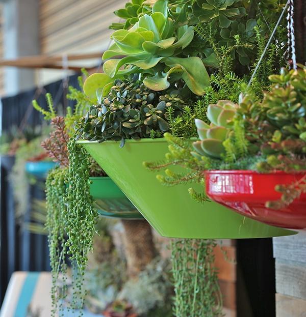 mini indoor gardens ideas for anyone0391