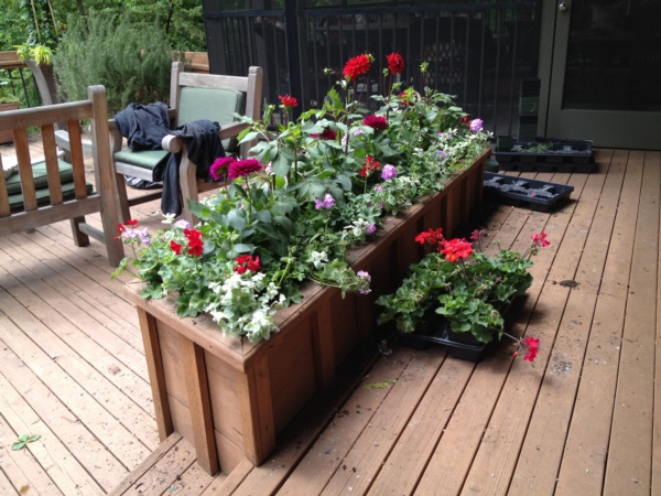 mini indoor gardens ideas for anyone0421