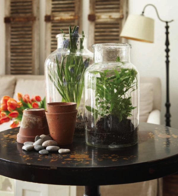 mini indoor gardens ideas for anyone0481