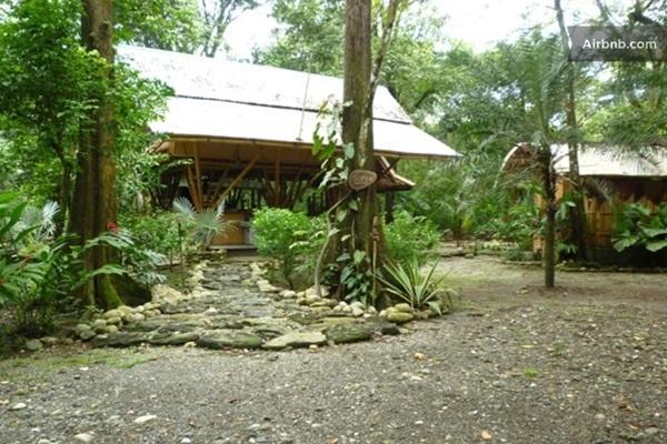 50 Breathtaking Bamboo House Designs0461