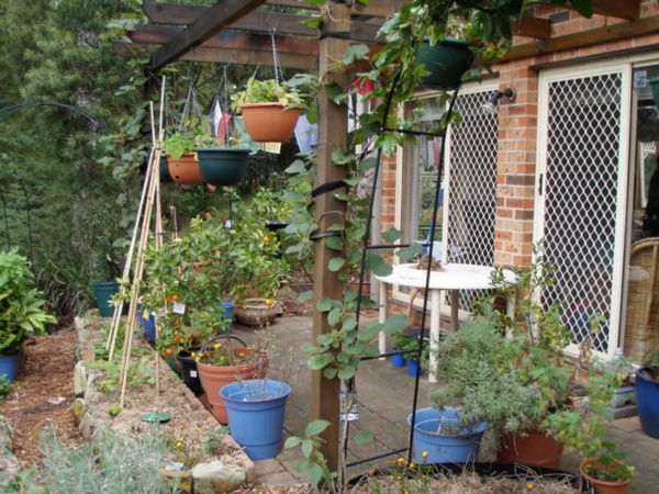 Beautiful and Safe garden privacy ideas0071