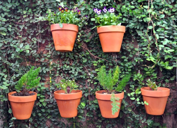 Beautiful and Safe garden privacy ideas0081