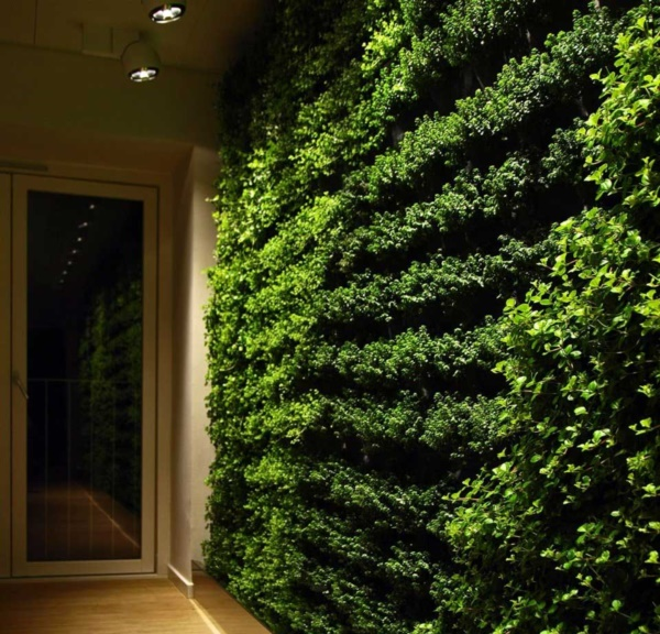 Beautiful and Safe garden privacy ideas0231