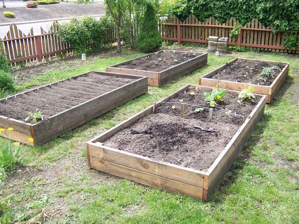 Life changing gardening hacks to try (11)