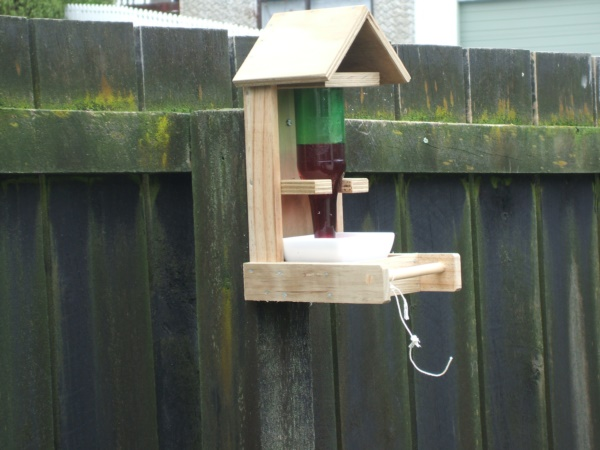 magical birds feeders to attract birds on your garden0061