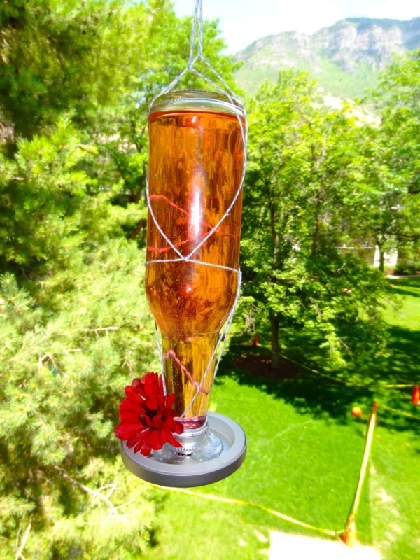 magical birds feeders to attract birds on your garden0071