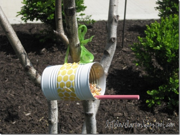 magical birds feeders to attract birds on your garden0161