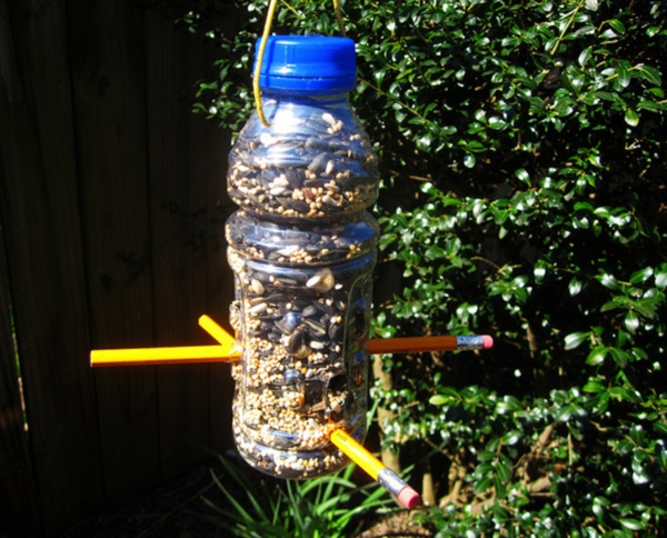 magical birds feeders to attract birds on your garden0181