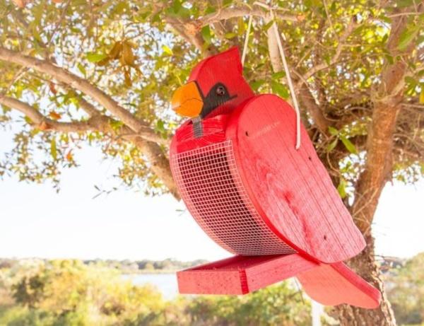 magical birds feeders to attract birds on your garden0231