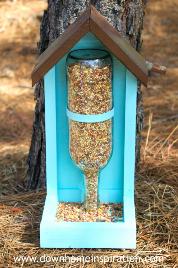 magical birds feeders to attract birds on your garden0261