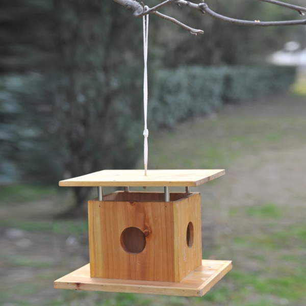 magical birds feeders to attract birds on your garden0341