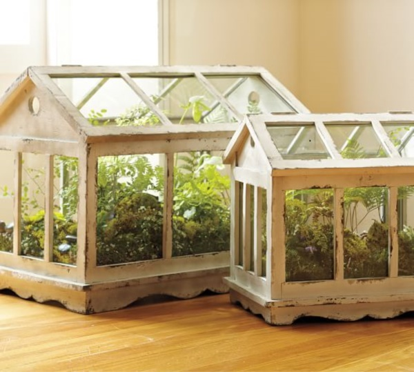 Magical Terrarium ideas to install in Your Home0011