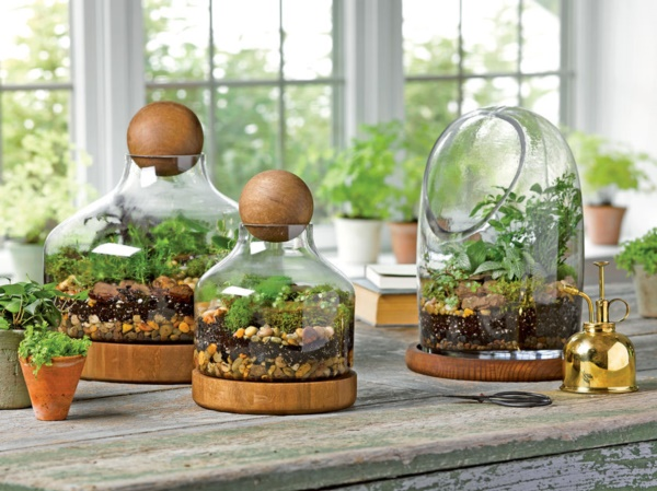 Magical Terrarium ideas to install in Your Home0021