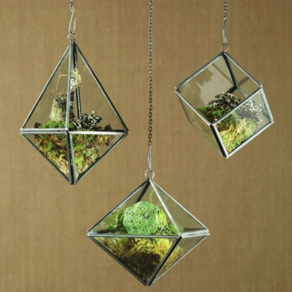 Magical Terrarium ideas to install in Your Home0041