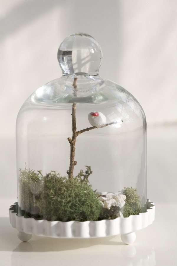 Magical Terrarium ideas to install in Your Home0051