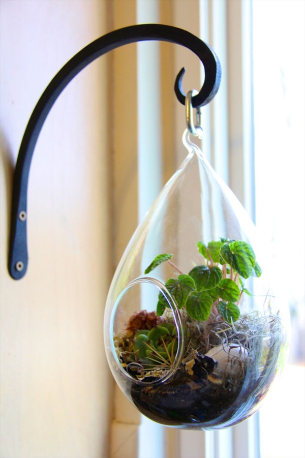 Magical Terrarium ideas to install in Your Home0061