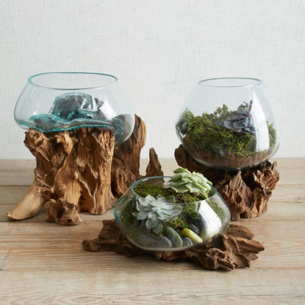 Magical Terrarium ideas to install in Your Home0091