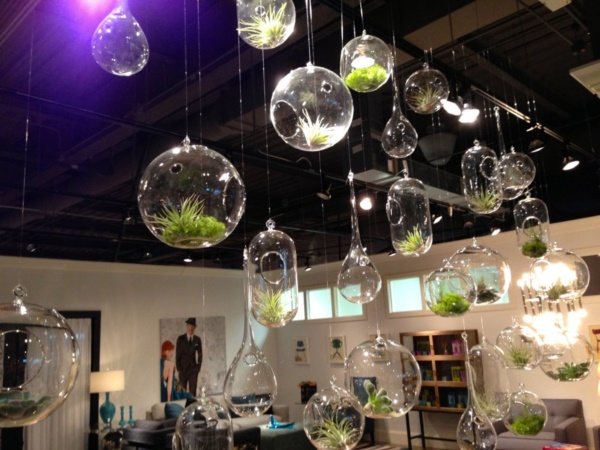 Magical Terrarium ideas to install in Your Home0111