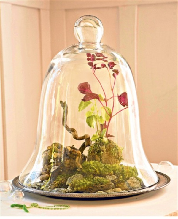 Magical Terrarium ideas to install in Your Home0151