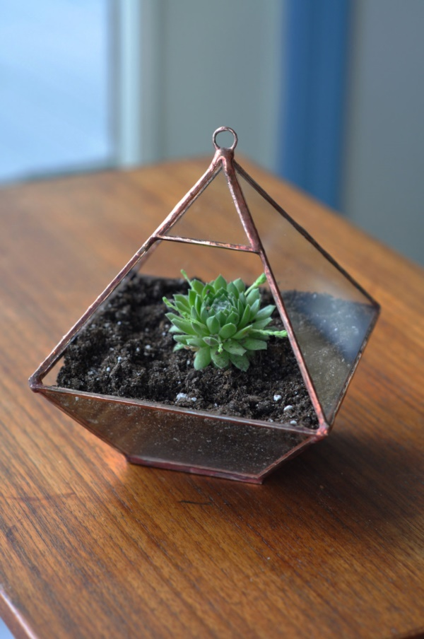 Magical Terrarium ideas to install in Your Home0191