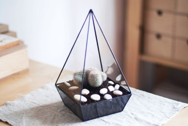 Magical Terrarium ideas to install in Your Home0211