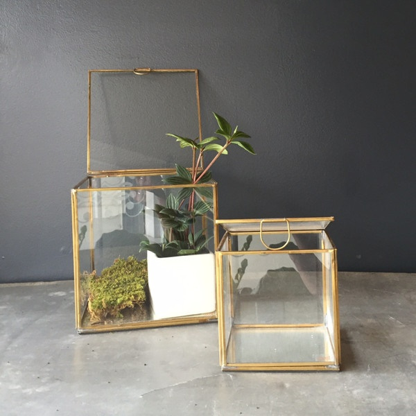 Magical Terrarium ideas to install in Your Home0221