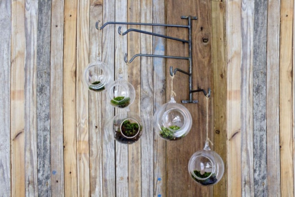 Magical Terrarium ideas to install in Your Home0231