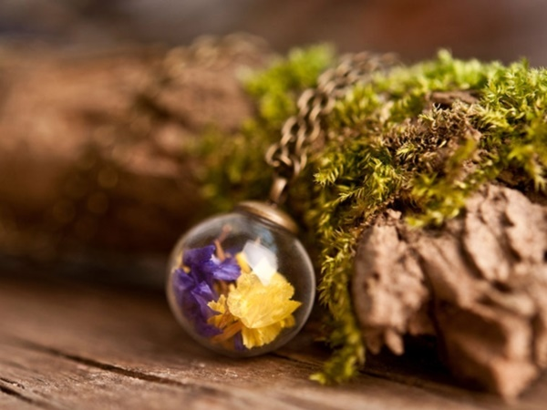 Magical Terrarium ideas to install in Your Home0251