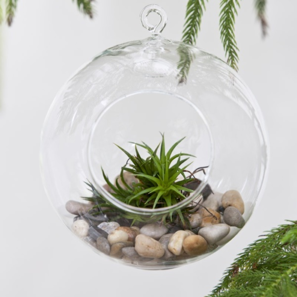 Magical Terrarium ideas to install in Your Home0311
