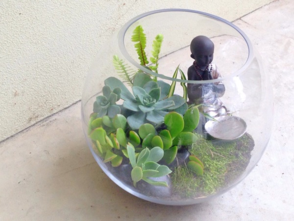 Magical Terrarium ideas to install in Your Home0401