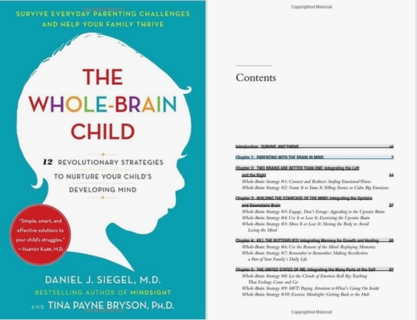 Stimulating Books Every Parent Must Read - Stimulating Books Every Parent Must Read 5