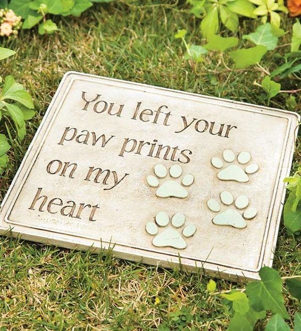 Funny Pet signs to Honor Your Four Legs Buddy - (1)