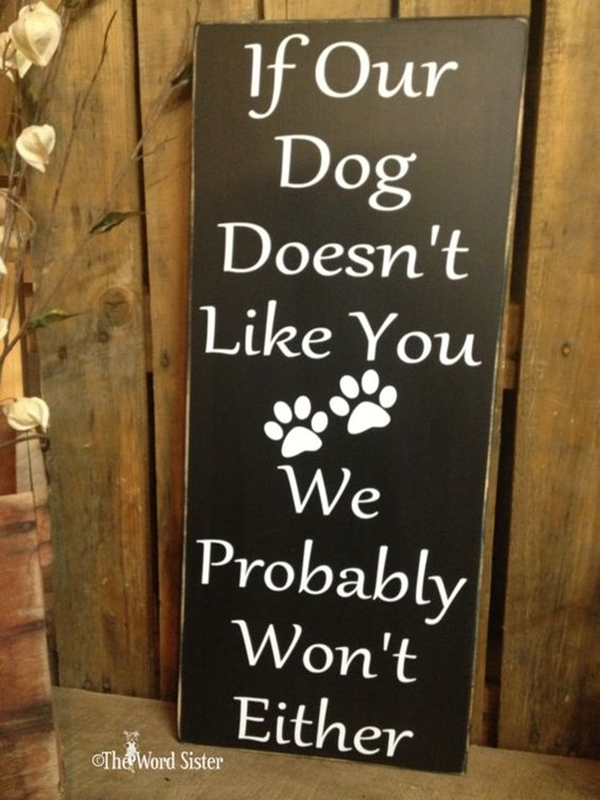 Funny Pet signs to Honor Your Four Legs Buddy - (14)