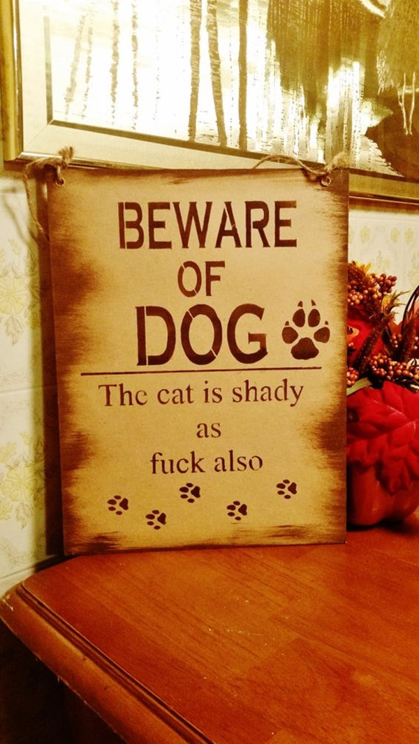 Funny Pet signs to Honor Your Four Legs Buddy - (17)