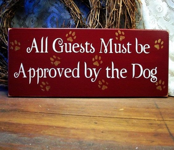 Funny Pet signs to Honor Your Four Legs Buddy - (20)