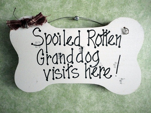 Funny Pet signs to Honor Your Four Legs Buddy - (23)