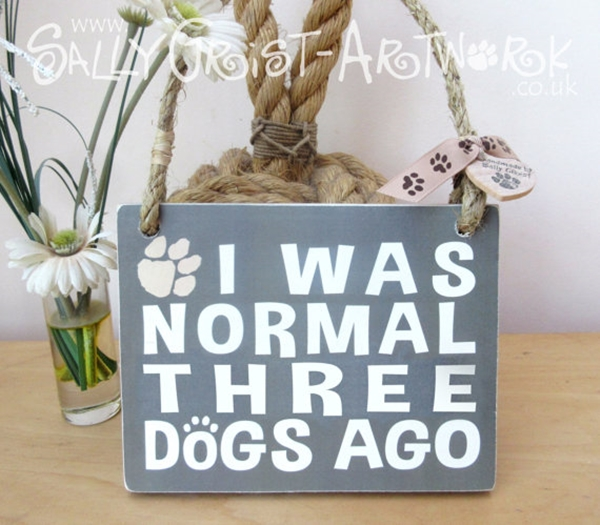 Funny Pet signs to Honor Your Four Legs Buddy - (28)