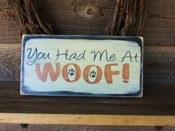 Funny Pet signs to Honor Your Four Legs Buddy - (39)