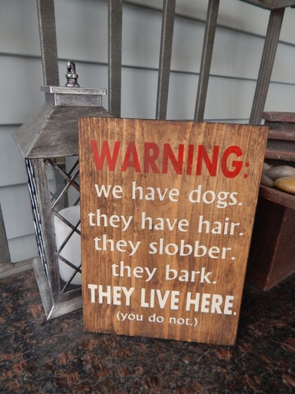 Funny Pet signs to Honor Your Four Legs Buddy - (5)