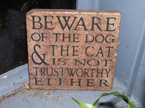 Funny Pet signs to Honor Your Four Legs Buddy - (6)