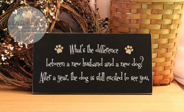 Funny Pet signs to Honor Your Four Legs Buddy - (9)