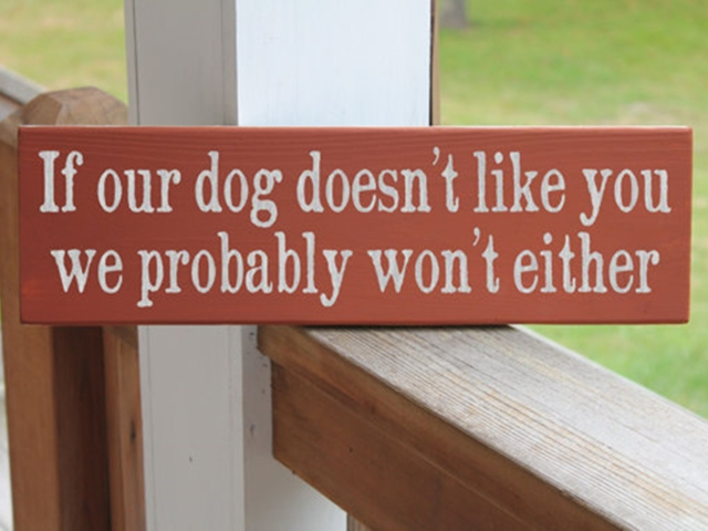 40 Funny Pet signs to Honor Your Four Legs Buddy