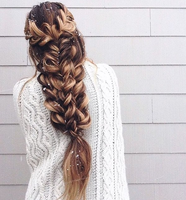 Cute and Girly Hairstyles with Braids - (3)