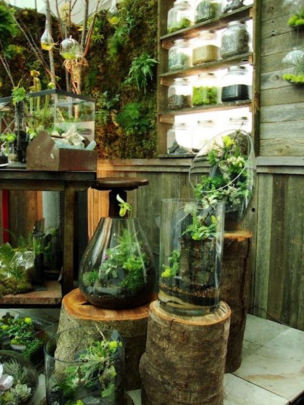 modern-indoor-garden-ideas-from-future-11
