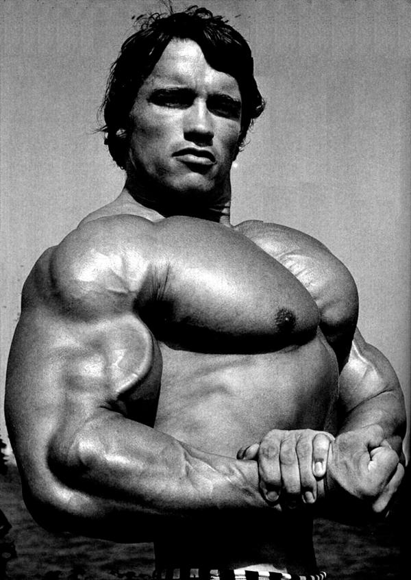 Arnold Schwarzenegger Bodybuilding Pictures - (1)