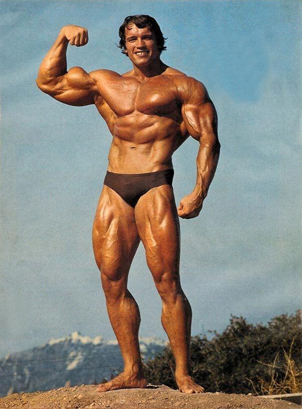 Arnold Schwarzenegger Bodybuilding Pictures - (12)