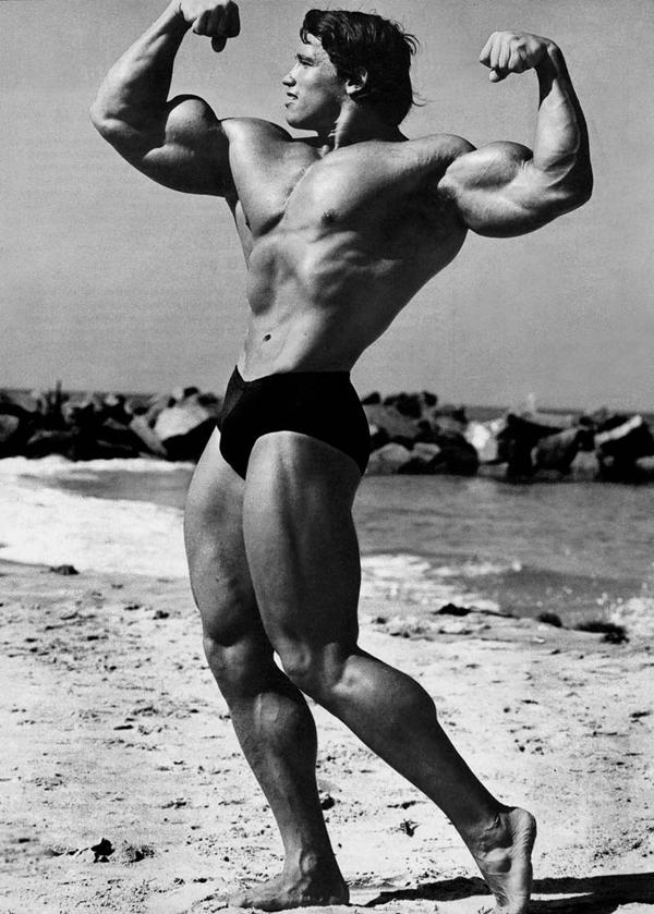 Arnold Schwarzenegger Bodybuilding Pictures - (2)